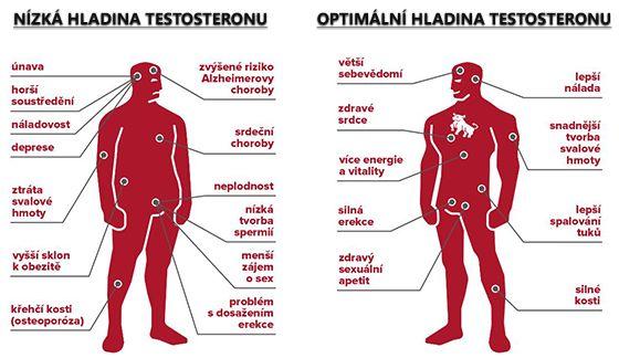 Co způsobuje zvýšený testosteron